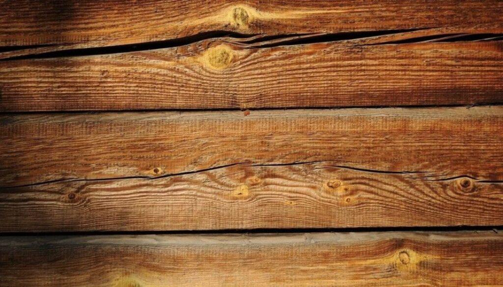 board-19208_1280-1-(1)